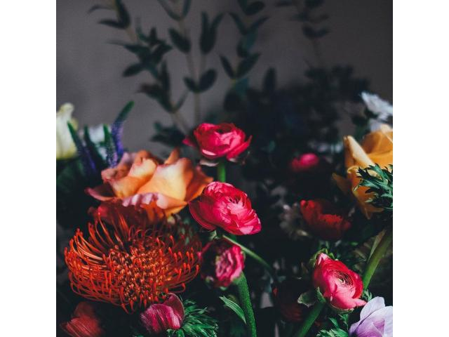 Same-Day Flower Delivery Service to Geelong - 1