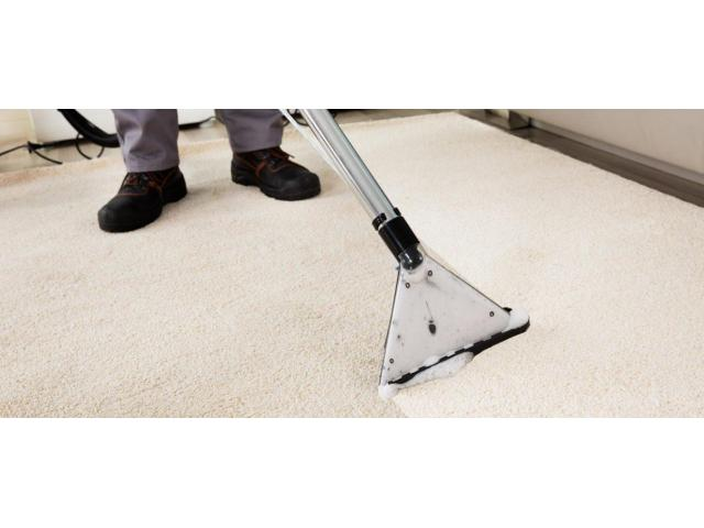 Carpet Cleaning Ocean Grove - 2