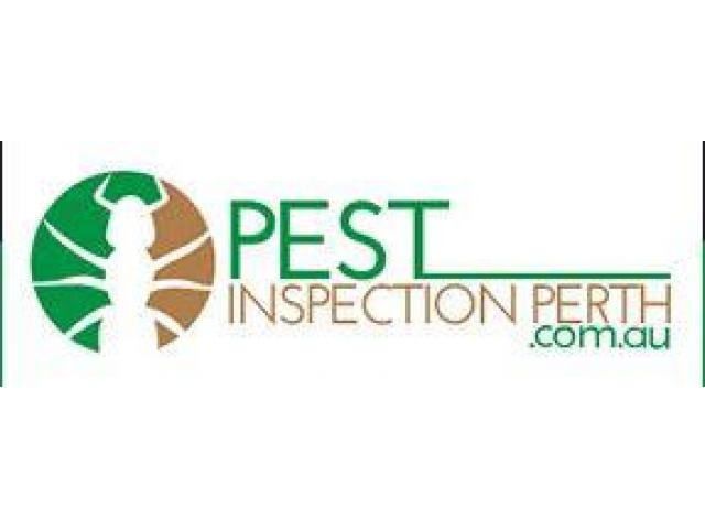 Pest Inspection Perth - 1