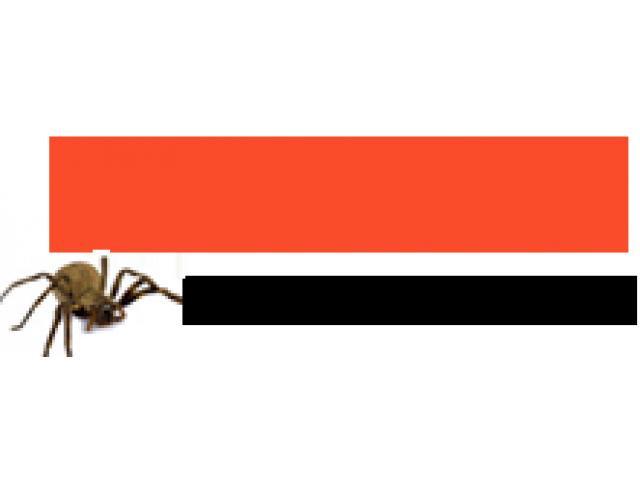 Pest Control Currumbin - 1