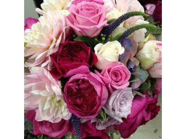 Blooming Flowers in Bunches – Antaeus Flowers - 1
