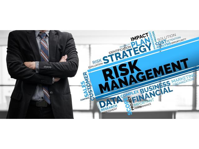 Find the Best Enterprise Risk Treatment from Risk Management Consultant - 1