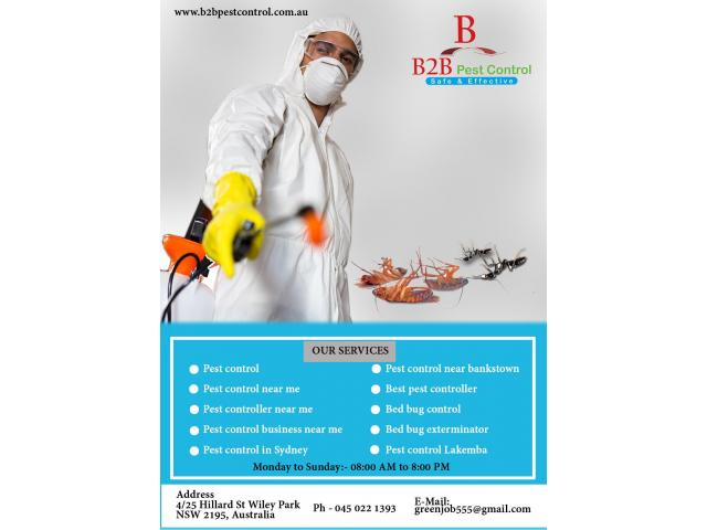 Avail the Advantages of Pest Control in Sydney - 1
