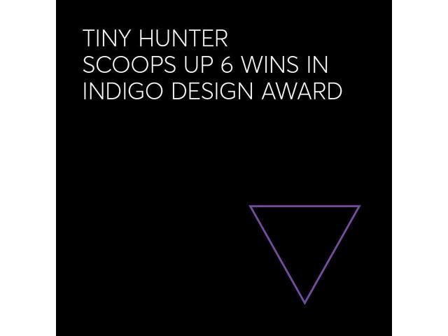 Tiny Hunter - 1