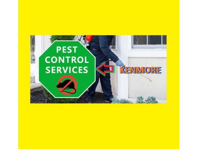 Pest Control Banyo - 1