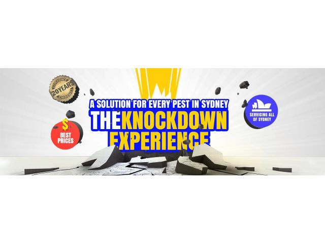 Knockdown Pest Control Sydney - Started from $120 with Warranty - 1