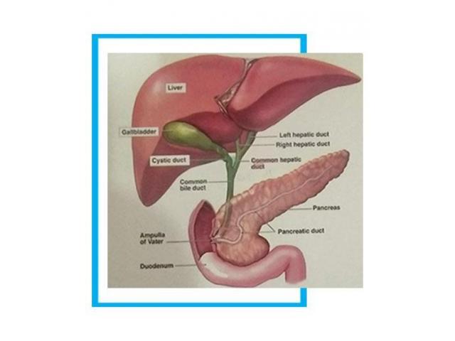 Laparoscopic Gallbladder Removal Surgery - 2