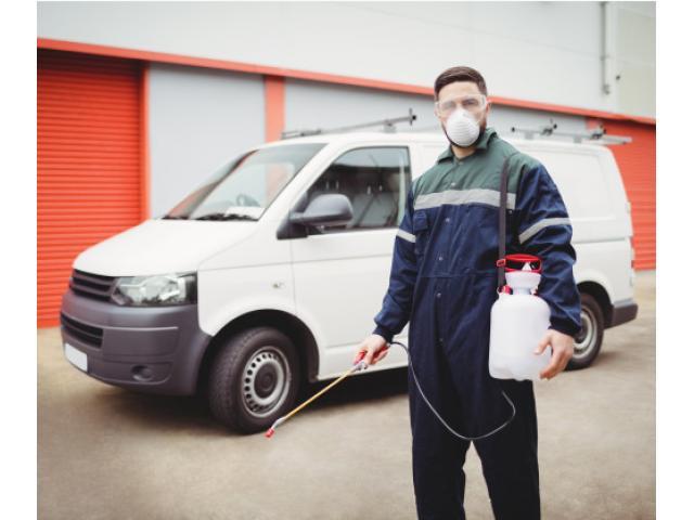 Pest Control Bundamba - 1