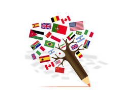Are you looking for Translation Services ?
