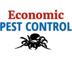 Best Commercial Pest Control Services In Killawarra - Economic Pest Control