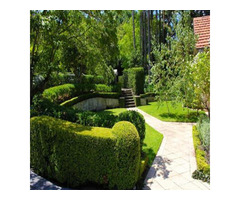 Landscaping Services for Trimming for Yard in Burwood