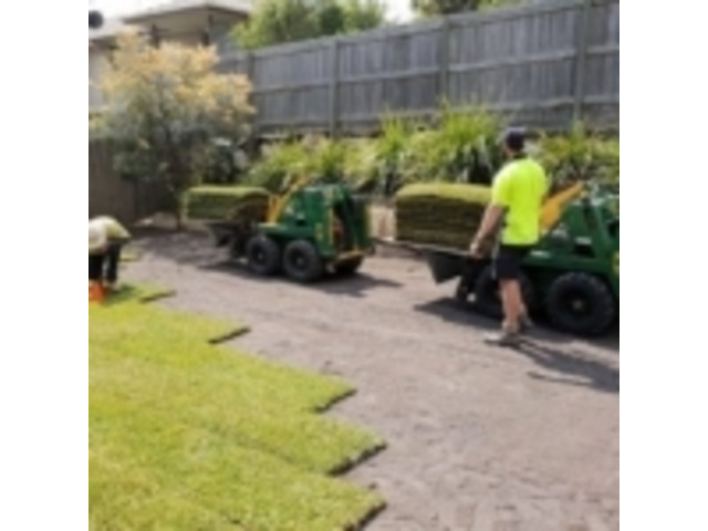 Turfing & Turf Preparation Services - Rogers Little Loaders. - 5