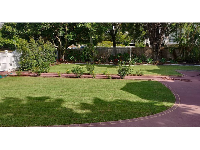 Lawn Front ReTurfing Services - Rogers Little Loaders. - 1