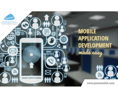 Custom Web and Mobile App development company
