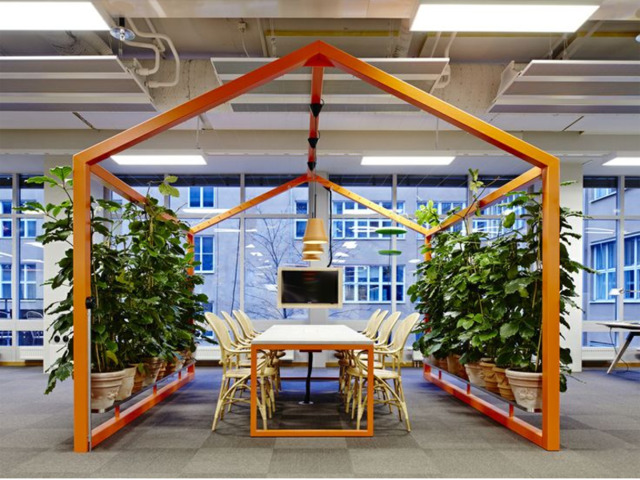Buy Office Plants | Inscape Indoor Plant Hire - 1