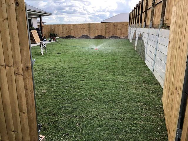 Re-turfing back yard on June 5 in Collingwood Park - 5