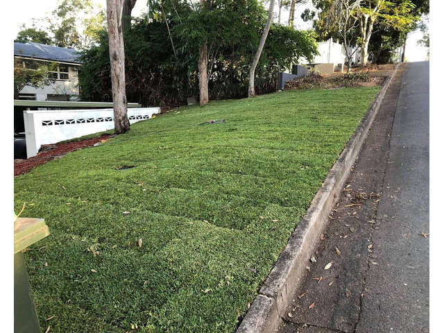 Mulching and turfing on June 14 at Fig Tree Pocket - 4