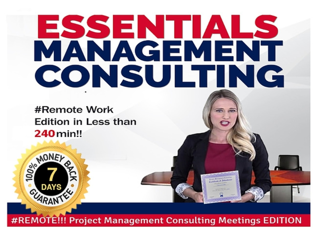 Online Project Management Consulting Essentials - 1