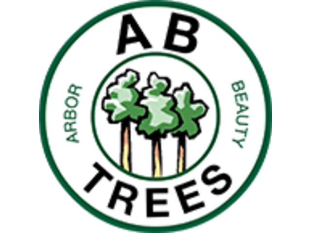 AB Trees - Your Friendly Local Tree Service in Perth - 1
