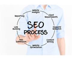 Great SEO Packages for all business sizes