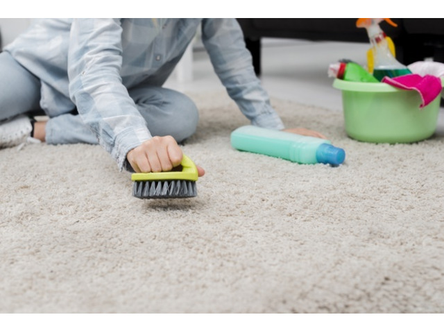 Eco-friendly Carpet Cleaning in Taigum @ Affordable Cost | Call : 0425610808 - 2