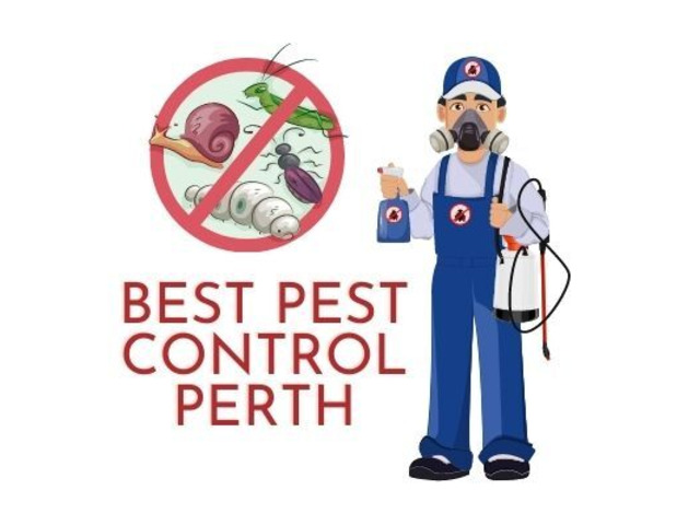 Best Pest Control Perth - 1
