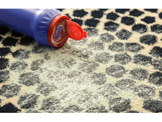 Carpet Cleaning Brisbane - 5