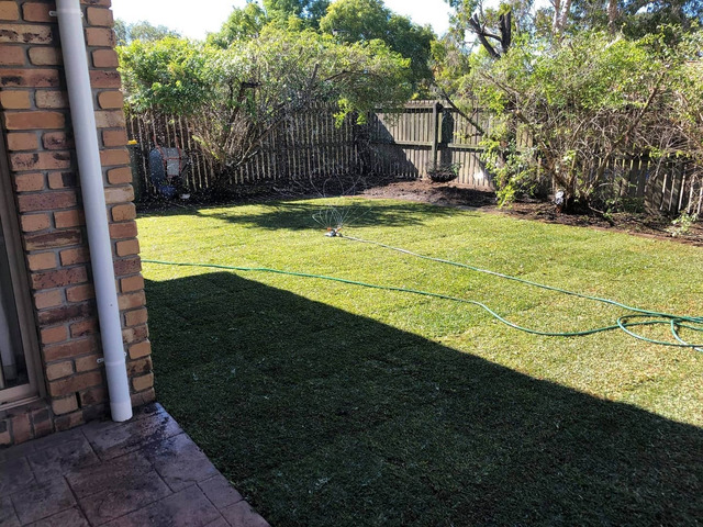 Give your yard a fresh start at life at Coopers Plains., Queensland. - Rogers Little Loaders. - 6