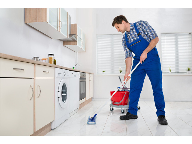 Professional cleaning Service - 1